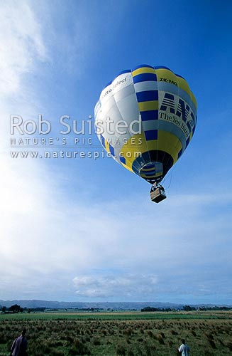Hot air balloon landing in paddock, Carterton, Carterton District, Wellington Region, New Zealand (NZ) stock photo.