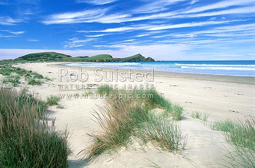 Surat's Bay beach - Catlins coast, South Otago, Catlins, Clutha District, Otago Region, New Zealand (NZ) stock photo.