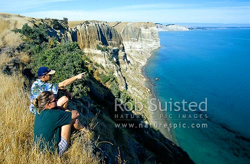 Sandstone cliffs along the Cape Kidnappers coastline, showing deposited geological layers, Hawke's Bay, Hastings District, Hawke's Bay Region, New Zealand (NZ) stock photo.