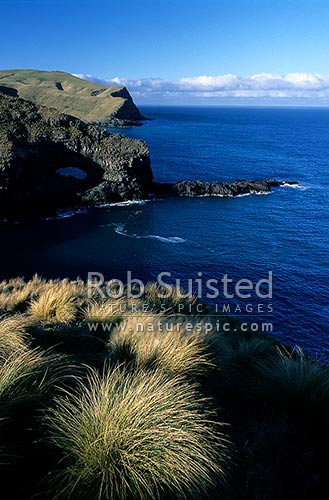 View east from the heads of Akaroa Harbour, Banks Peninsula, Christchurch City District, Canterbury Region, New Zealand (NZ) stock photo.