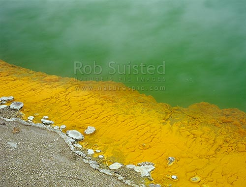 Champagne pool and sinter, Waiotapu Geothermal Area. Orange coloured caused by minerals orpiment and realgar, sulfides of arsenic, Rotorua, Rotorua District, Bay of Plenty Region, New Zealand (NZ) stock photo.
