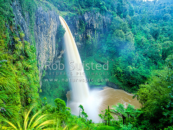 Bridal Veil Falls, Raglan, Waikato District, Waikato Region, New Zealand (NZ) stock photo.