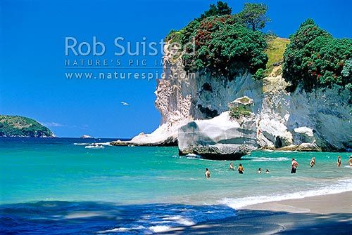 People enjoying the sea at Cathedral Cove beach (Marine Reserve), Coromandel Peninsula, Thames-Coromandel District, Waikato Region, New Zealand (NZ) stock photo.