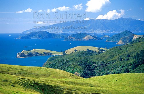Overlooking Coromandel Harbour from the South, Coromandel Peninsula, Thames-Coromandel District, Waikato Region, New Zealand (NZ) stock photo.
