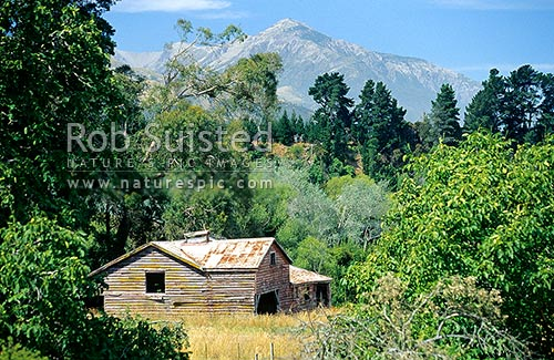 Old woolshed; Inland Kaikoura road, Marlborough, Kaikoura District, Canterbury Region, New Zealand (NZ) stock photo.