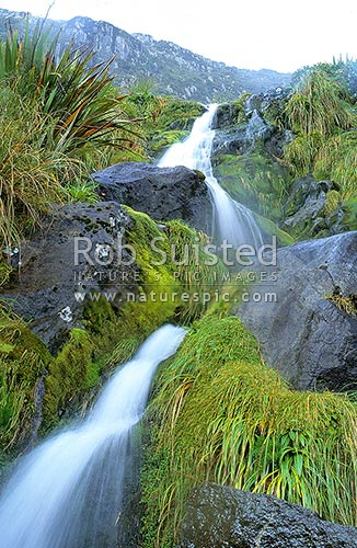 Waterfall gully. Time exposure of very head of George River, Fiordland National Park, Southland District, Southland Region, New Zealand (NZ) stock photo.