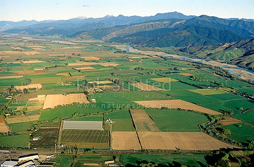 Intensive Agricultural land in the Wairau Valley near Blenheim. Aerial View, Marlborough, Marlborough District, Marlborough Region, New Zealand (NZ) stock photo.