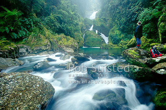 A tramper at MacKay Falls on the Milford Track -Arthur Valley - The 'finest walk in the world', Fiordland National Park, Southland District, Southland Region, New Zealand (NZ) stock photo.