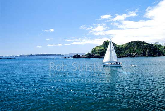 Yachting near Russell, Bay of Islands, Far North District, Northland Region, New Zealand (NZ) stock photo.