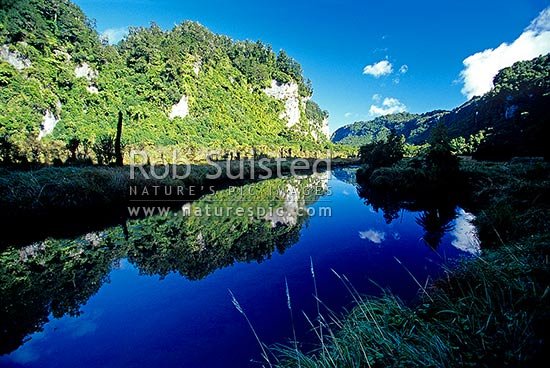 Limestone bluffs reflecting in calm pool of Bullock Creek, Paparoa National Park, Punakaiki, Buller District, West Coast Region, New Zealand (NZ) stock photo.