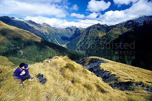 Hunter glassing for deer above Howe Creek - tributary of the Burke River. South Westland, South Westland, Westland District, West Coast Region, New Zealand (NZ) stock photo.
