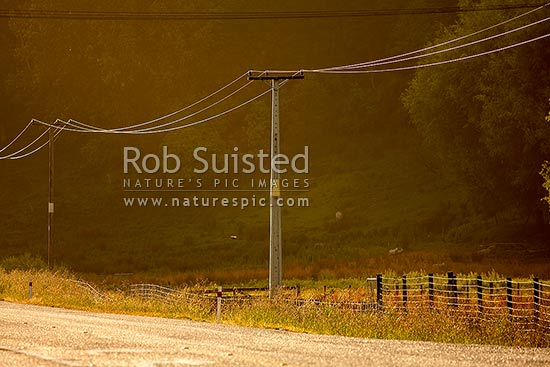 Power lines, wires and power poles alongside country road in morning light, Athol, Southland District, Southland Region, New Zealand (NZ) stock photo.