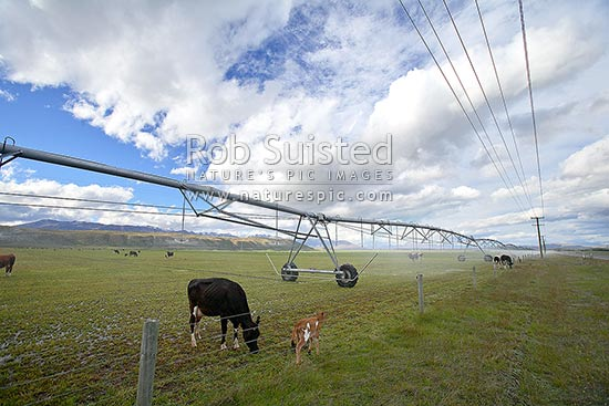 Massive water irrigators turning MacKenzie high country into pasture for dairy cows and production, Twizel, MacKenzie District, Canterbury Region, New Zealand (NZ) stock photo.