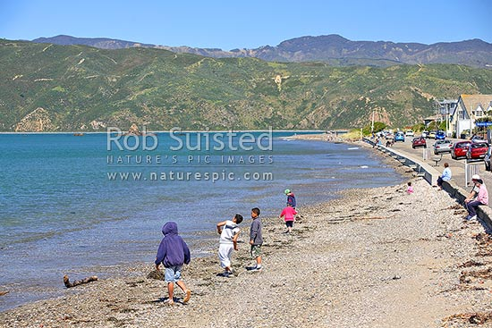 Children playing on Seatoun / Worser Bay beach, Wellington. Eastern Harbour and Remutaka (Rimutaka) hills behind, Seatoun, Wellington, Wellington City District, Wellington Region, New Zealand (NZ) stock photo.