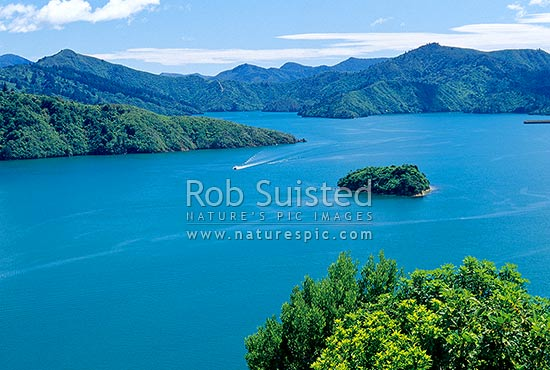 A boat leaving Picton in Queen Charlotte Sound. Mabel Island centre right. Marlborough Sds, Marlborough Sounds, Marlborough District, Marlborough Region, New Zealand (NZ) stock photo.