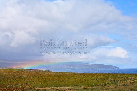 Rainbow over Enderby Island, with main Auckland Island beyond. World Heritage Site, Enderby Island, Auckland Islands, NZ Sub Antarctic District, NZ Sub Antarctic Region, New Zealand (NZ) stock photo.