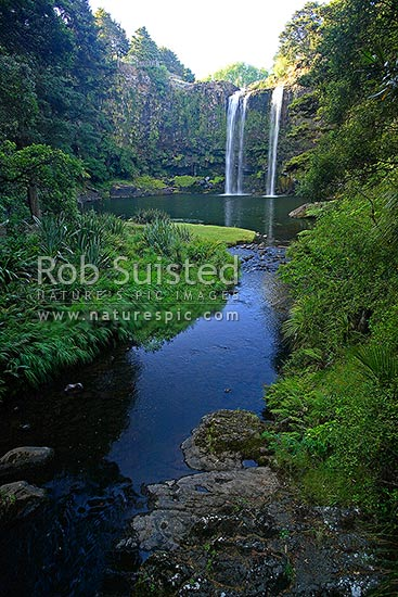Whangarei Falls, a 25 metre waterfall on the Hatea River, scenic reserve, Whangarei, Far North District, Northland Region, New Zealand (NZ) stock photo.