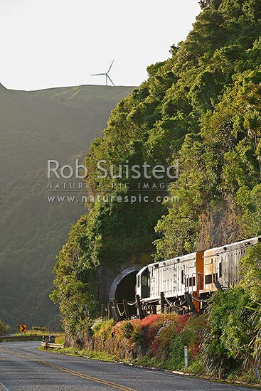NZ railway locomotives, goods train, entering tunnel on line next to State Highway 3 near Manawatu Gorge. Wind turbine above, Woodville, Tararua District, Manawatu-Wanganui Region, New Zealand (NZ) stock photo.