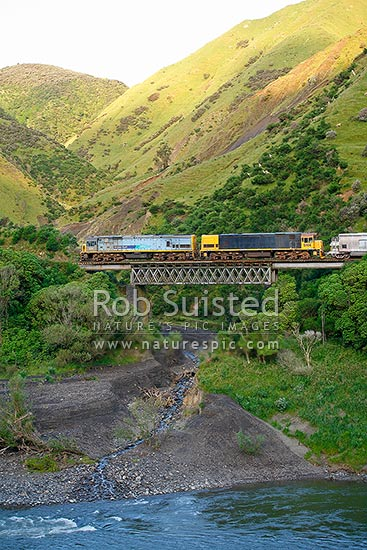 NZ railway locomotives, goods train, crossing viaduct or bridge in the Manawatu Gorge, Woodville, Tararua District, Manawatu-Wanganui Region, New Zealand (NZ) stock photo.
