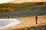 Family on sandy beach surfcasting