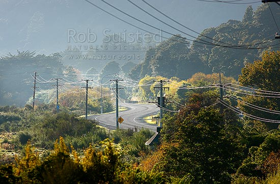 Powerlines and power poles carrying electricity transmission alongside State Highway 2 road. Semi-rural, Upper Hutt, Wellington Region, New Zealand (NZ) stock photo.