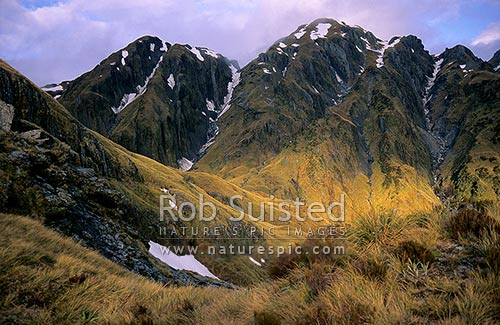 Evening sunlight in the head of Dale Creek, Mt Adams, Westland, Westland District, West Coast Region, New Zealand (NZ) stock photo.