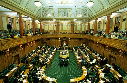 Mps sitting in the house of representatives parliament for House sitter wellington
