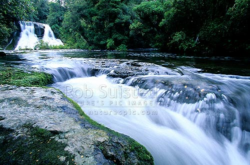 Mamahaki Falls at Aniwaniwa (15.2 metres), Te Urewera National Park, Wairoa District, Hawke's Bay Region, New Zealand (NZ) stock photo.