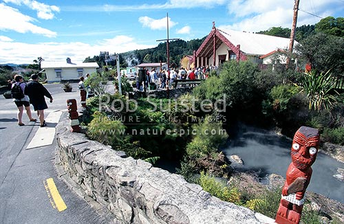 Visitors approaching Te Pakira Marae of Whakarewarewa thermal village, Rotorua. Maori carving in foreground, Rotorua, Rotorua District, Bay of Plenty Region, New Zealand (NZ) stock photo.