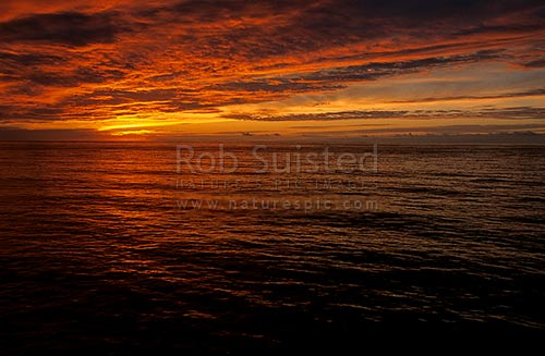 Sunrise at the Sub Antarctic Snares island, The Snares Islands, NZ Sub Antarctic District, NZ Sub Antarctic Region, New Zealand (NZ) stock photo.